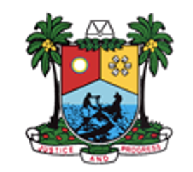 Lagos State Government-Mercy George-Igbafe-LEARNTOR
